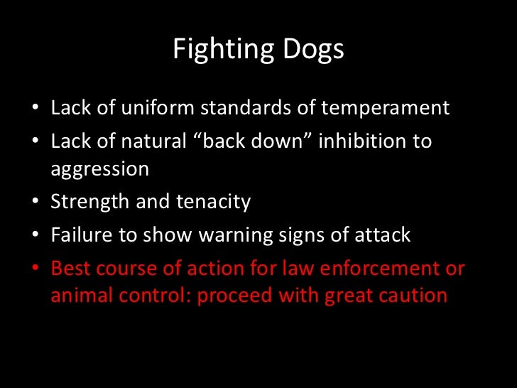 Suppression Training For Aggressive Dogs