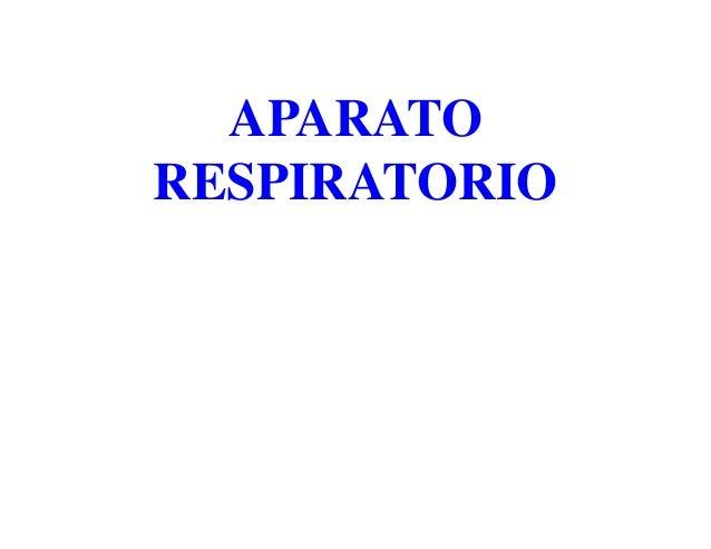 APARATORESPIRATORIO