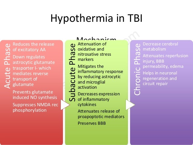 Hypothermia in TBI Mechanism AcutePhase Reduces the release of excitatory AA Down regulates astrocytic glutamate trasporte...
