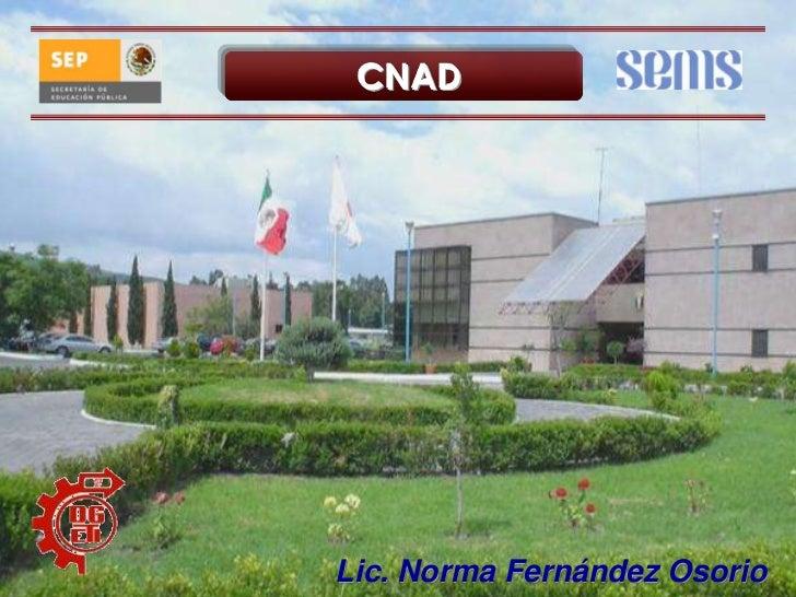 CNAD<br />Lic. Norma Fernández Osorio<br />