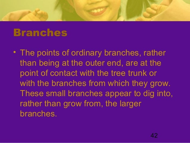 42Branches• The points of ordinary branches, ratherthan being at the outer end, are at thepoint of contact with the tree t...