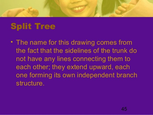 45Split Tree• The name for this drawing comes fromthe fact that the sidelines of the trunk donot have any lines connecting...