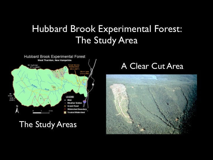 the hubbard brook ecosystem study essay The 49 th annual cooperator's meeting of the hubbard brook ecosystem was held on july 11-12, 2012 at the hubbard brook experimental forest scientific presentations are a traditional part of the meeting and the following psu and cfe researchers presented their research at the meeting.