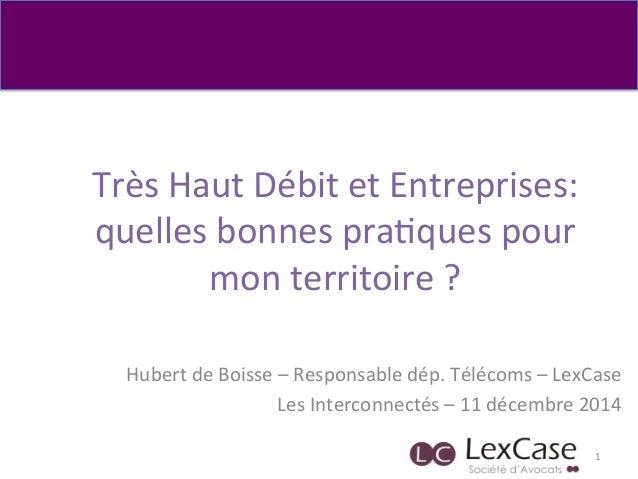 Très  Haut  Débit  et  Entreprises:   quelles  bonnes  pra6ques  pour   mon  territoire  ?   Huber...
