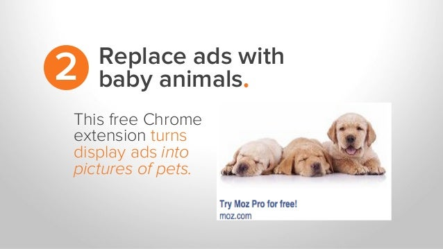 Replace ads with baby animals.2 This free Chrome extension turns display ads into pictures of pets.