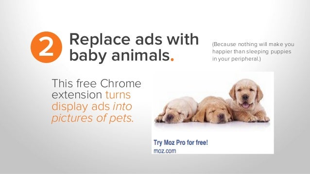 Replace ads with baby animals.2 This free Chrome extension turns display ads into pictures of pets. (Because nothing will ...