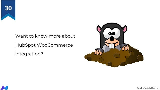 Want to know more about HubSpot WooCommerce integration? MakeWebBetter 30