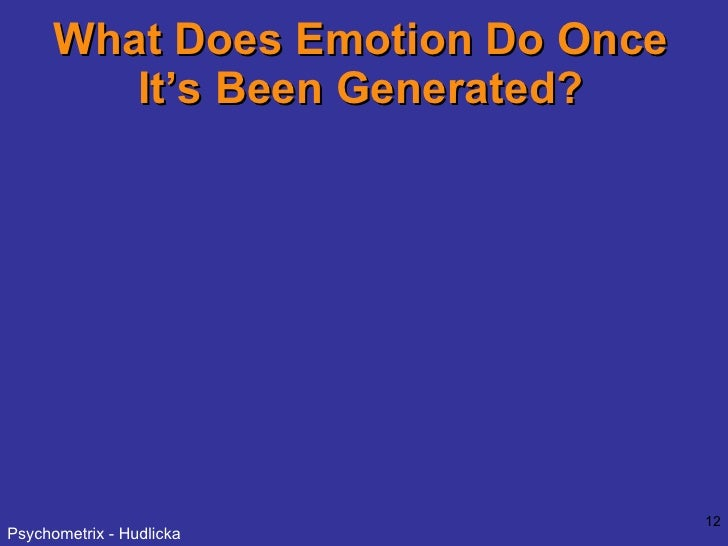 What Does Emotion Do Once It's Been Generated?