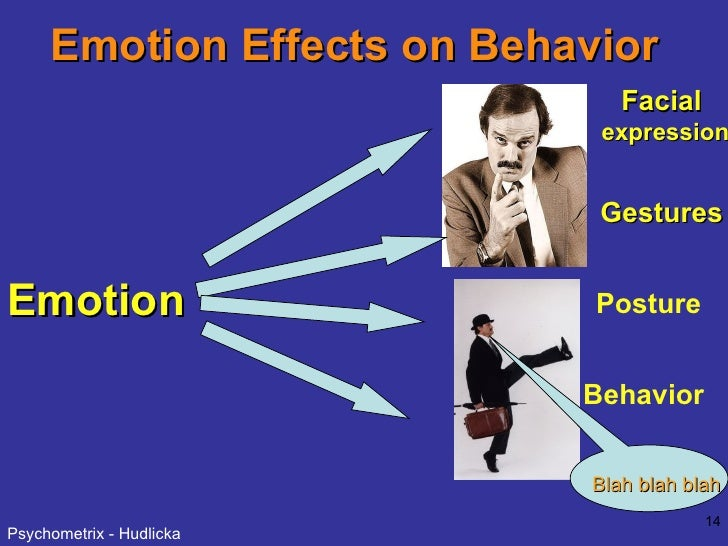 Emotion Effects on Behavior Emotion Facial  expression Gestures Posture Behavior Blah blah blah