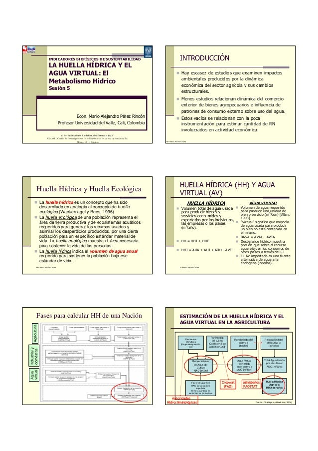 INDICADORES BIOFÍSICOS DE SUSTENTABILIDADLA HUELLA HÍDRICA Y ELAGUA VIRTUAL: ElMetabolismo HídricoSesión 5Econ. Mario Alej...