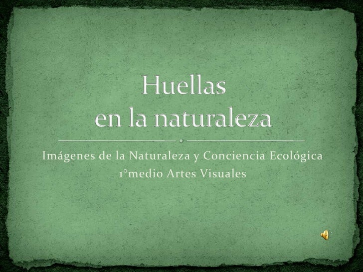Imágenes de la Naturaleza y Conciencia Ecológica<br />1°medio Artes Visuales<br />Huellasen la naturaleza<br />