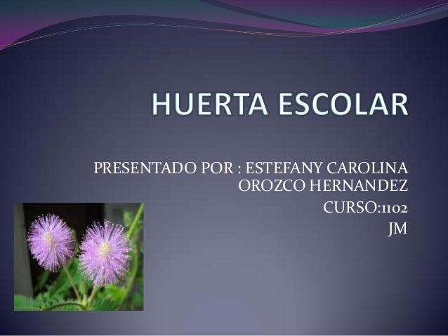 PRESENTADO POR : ESTEFANY CAROLINA               OROZCO HERNANDEZ                         CURSO:1102                      ...