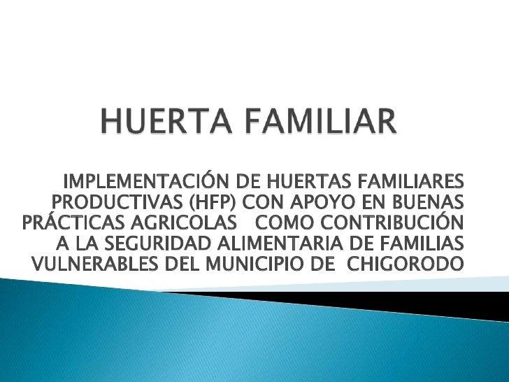 HUERTA FAMILIAR<br />IMPLEMENTACIÓN DE HUERTAS FAMILIARES PRODUCTIVAS (HFP) CON APOYO EN BUENAS PRÁCTICAS AGRICOLAS   COMO...