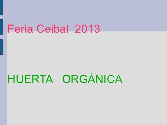 Feria Ceibal 2013 HUERTA ORGÁNICA