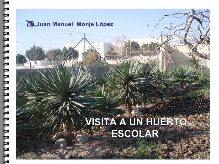 VISITA A UN HUERTO ESCOLAR    Juan Manuel  Monje López
