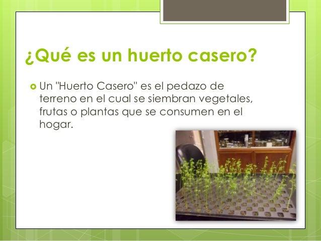 Huerto casero for Que plantas se siembran en un huerto
