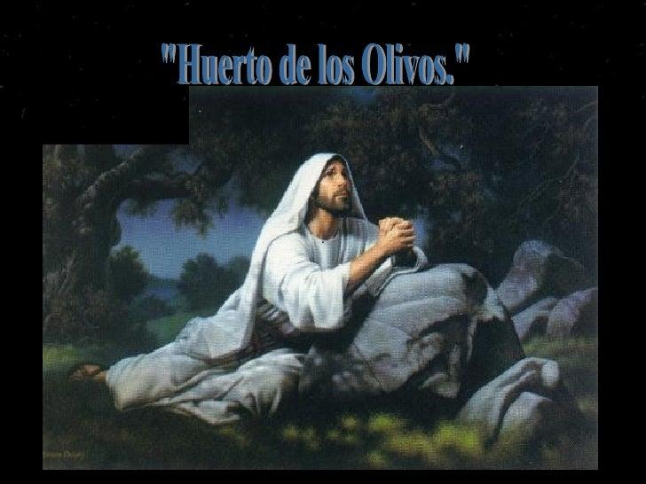 """""""Huerto de los Olivos."""""""