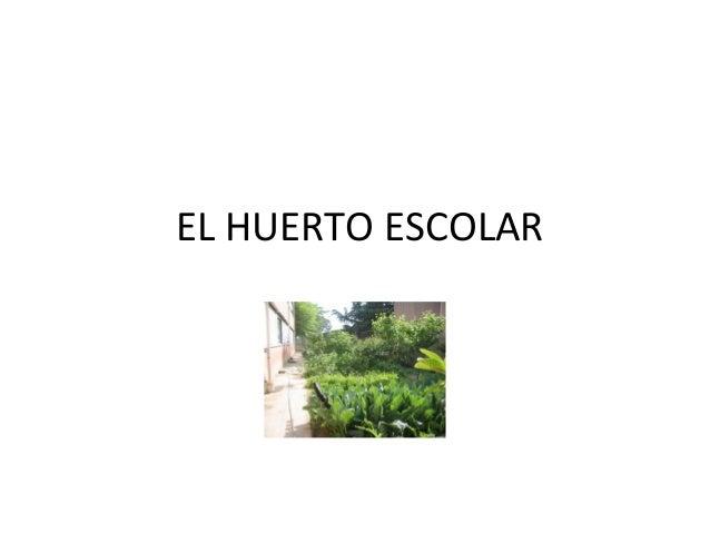 EL HUERTO ESCOLAR