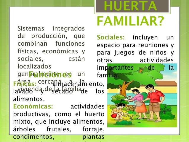 Huerto escolar huerto familiar - Que plantar en el huerto ...