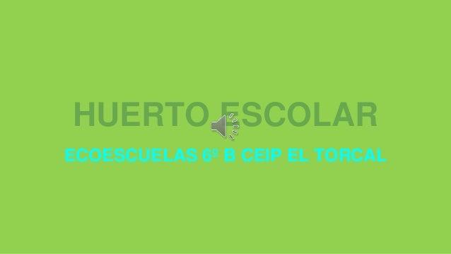 HUERTO ESCOLAR ECOESCUELAS 6º B CEIP EL TORCAL