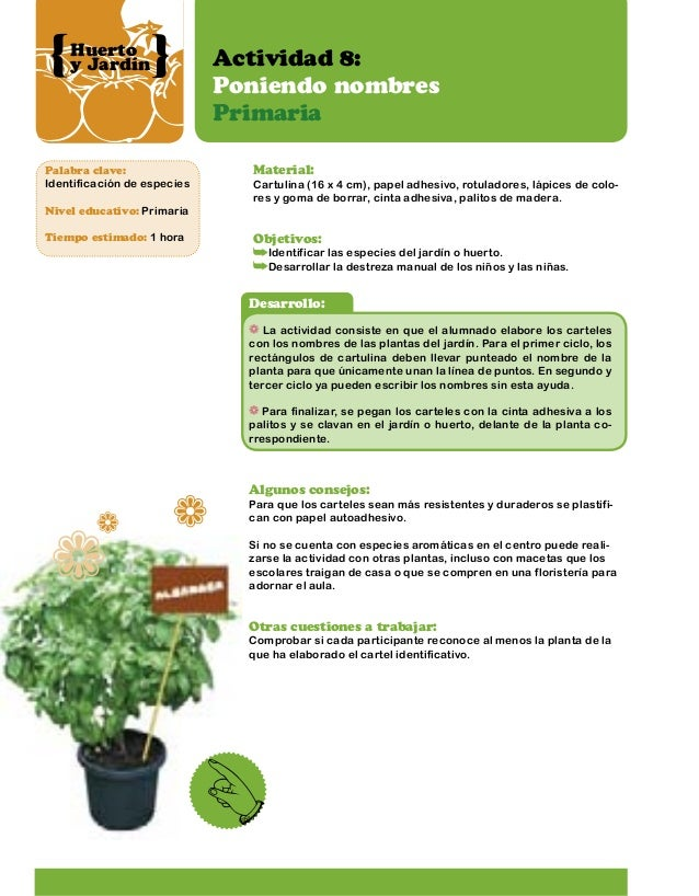 Huerto jardin actividades - Nombres de plantas de jardin ...