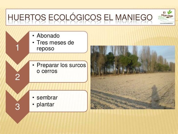 HUERTOS ECOLÓGICOS EL MANIEGO     • Abonado     • Tres meses de 1     reposo     • Preparar los surcos       o cerros 2   ...
