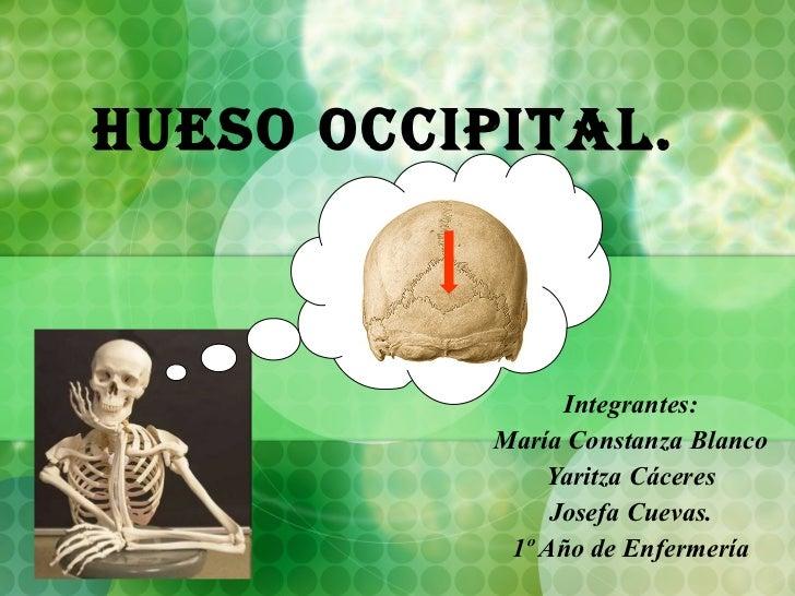 Hueso Occipital. Integrantes: María Constanza Blanco Yaritza Cáceres Josefa Cuevas. 1º Año de Enfermería