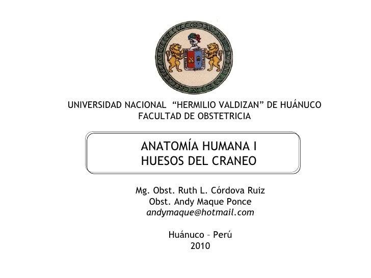"""11/12/10 Mg.obst. RUTH CORDOVA RUIZ UNIVERSIDAD NACIONAL  """"HERMILIO VALDIZAN"""" DE HUÁNUCO FACULTAD DE OBSTETRICIA ANATOMÍA ..."""