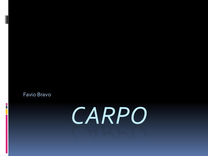 cARPO<br />Favio Bravo<br />