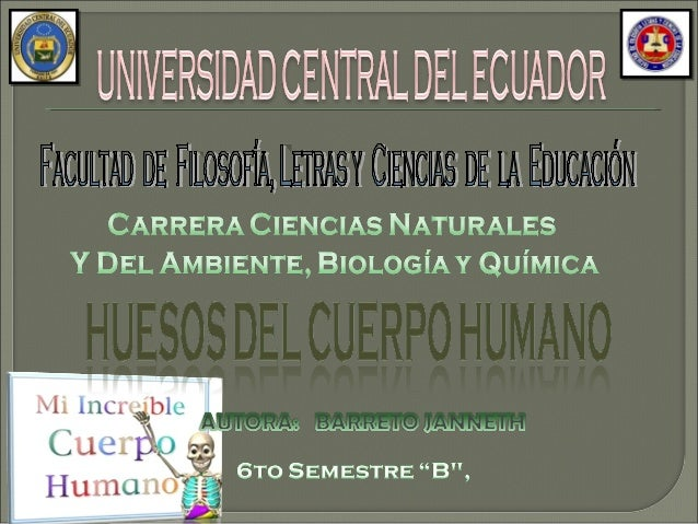 TejidoóseoTejidoóseoTejidoconectivoTejidoconectivo*Osteocitos*Osteoclastos*Osteocitos*Osteoclastos**Célulasosteógenas*Oste...