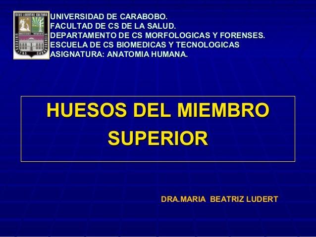 UNIVERSIDAD DE CARABOBO.UNIVERSIDAD DE CARABOBO.FACULTAD DE CS DE LA SALUD.FACULTAD DE CS DE LA SALUD.DEPARTAMENTO DE CS M...