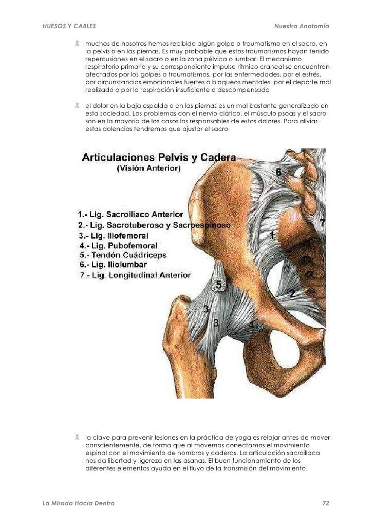 huesos-y-cables-72-728.jpg?cb=1318396466