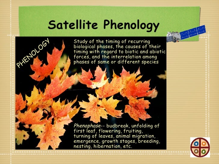 Satellite Phenology              GY                   Study of the timing of recurring                   biological phases...