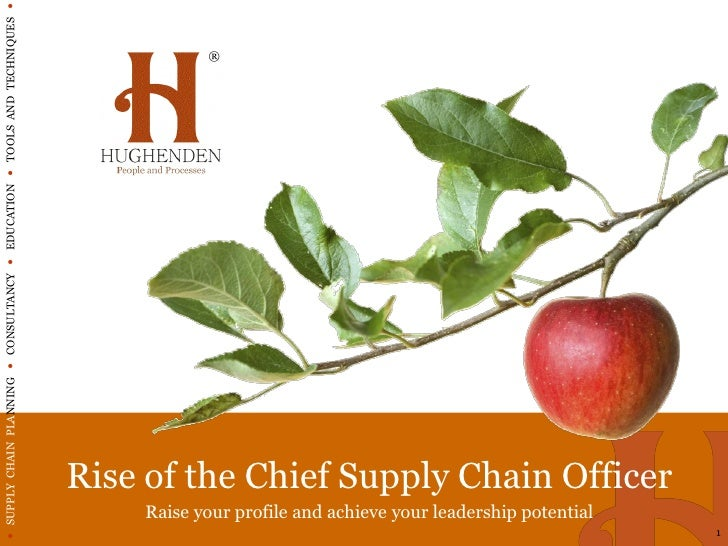  SUPPLY CHAIN PLANNING  CONSULTANCY  EDUCATION  TOOLS AND TECHNIQUES                                                 ...
