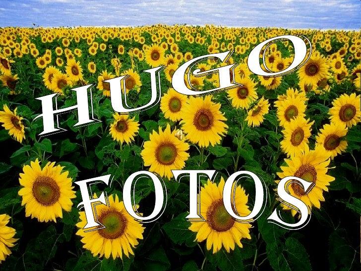 Hugo Fotos