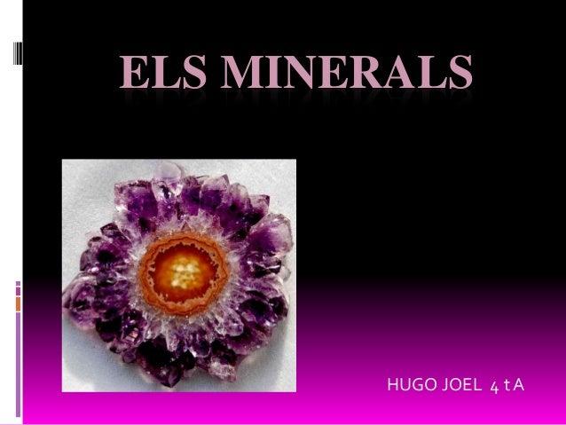 ELS MINERALS HUGO JOEL 4 t A