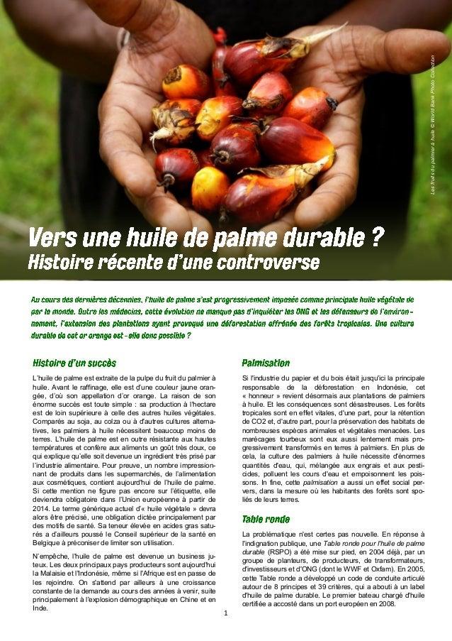1 Lesfruitsdupalmieràhuile©WorldBankPhotoCollection L'huile de palme est extraite de la pulpe du fruit du palmier à huile....