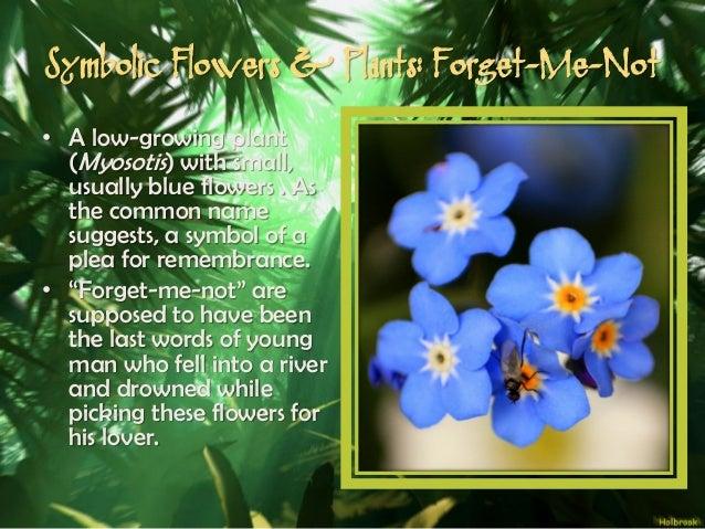 mythological meanings unmasked decoding the symbolism of myth, Natural flower