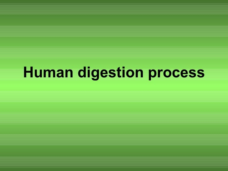 a research on human digestion process Digestive system flow chart  through the process of digestion starches and carbohydrates are turned into glucose  human biology digestion and nutrition.