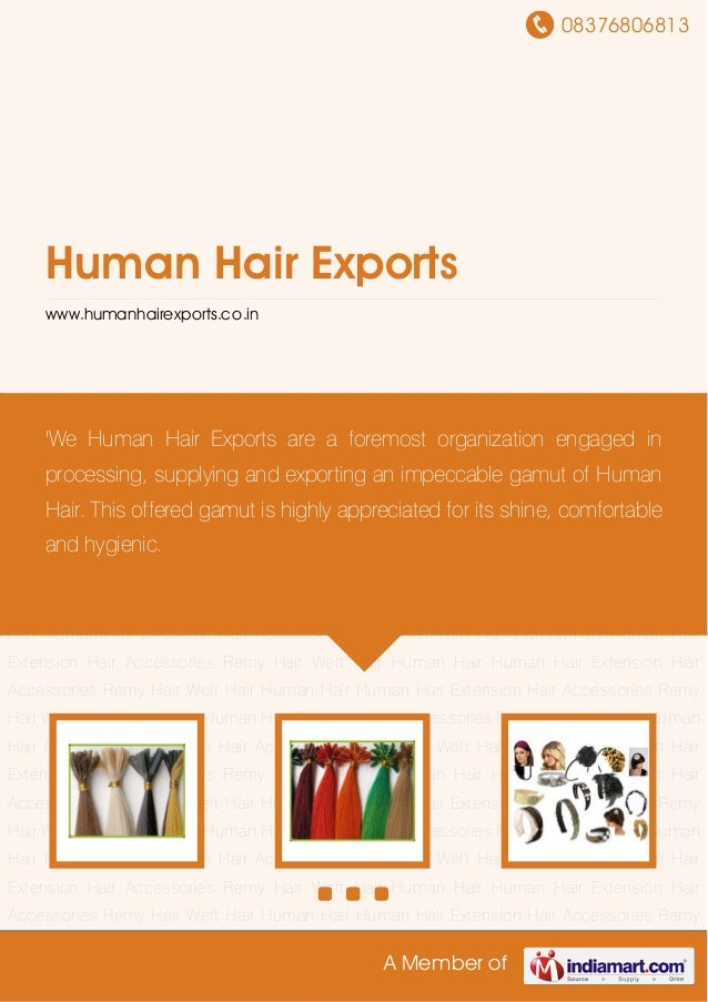 08376806813A Member ofHuman Hair Exportswww.humanhairexports.co.inHuman Hair Human Hair Extension Hair Accessories Remy Ha...