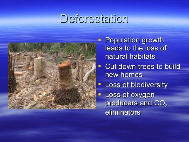 essay on human life and environment You are welcome to view the samples of our custom environmental science essays  environmental issues essay  development and improve the quality of life .