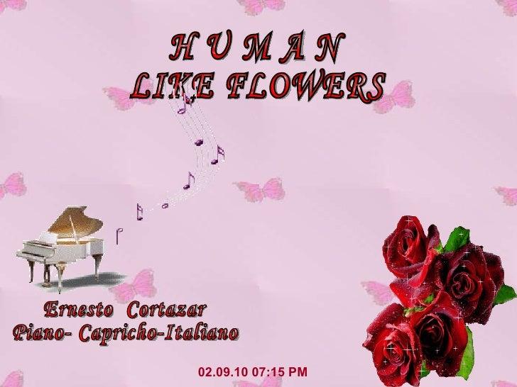 02.09.10   07:14 PM H U M A N LIKE FLOWERS Ernesto  Cortazar Piano- Capricho-Italiano