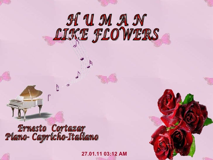 27.01.11   03:12 AM H U M A N LIKE FLOWERS Ernesto  Cortazar Piano- Capricho-Italiano