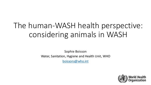 The human-WASH health perspective: considering animals in WASH Sophie Boisson Water, Sanitation, Hygiene and Health Unit, ...
