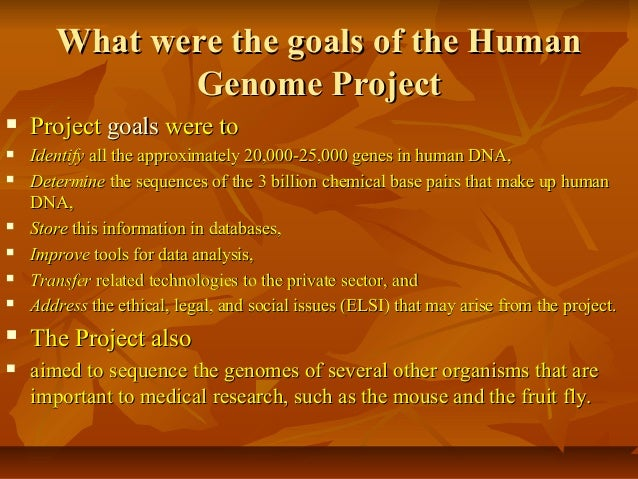 an analysis of the human genome project The human genome project is an international research effort whose goals are  to  including a project in iceland that involves the collection and analysis of.