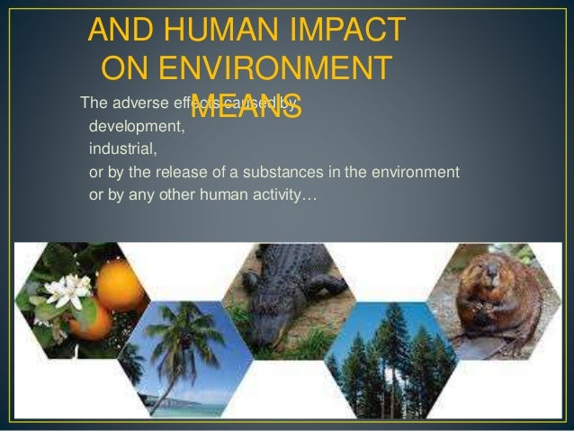 how environment affects humans It has been a banner week for biomedical news the institute of medicine released a provocative and somewhat controversial report on calcium and vitamin d intake the american cancer society announced results of an enormous study reaffirming the link between body mass index and mortality there.