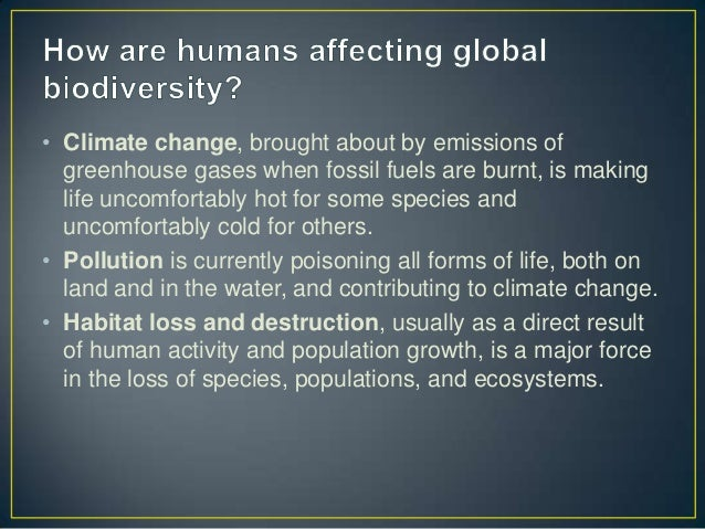some ways the enviornment affects human The effects of humidity on the human body adverse effects there are two types of ways that to your environment but how to prevent some of the.