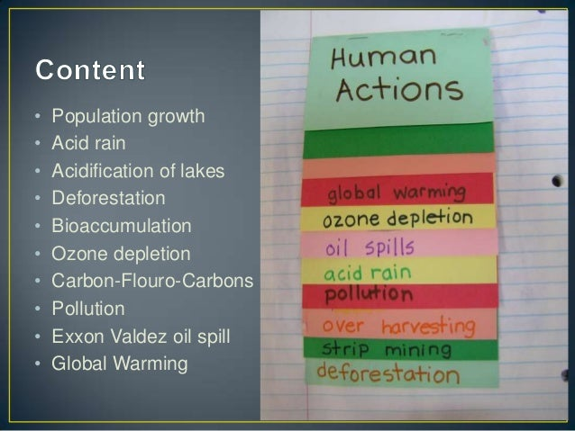 Bioaccumulation Impact Of Natural Resources