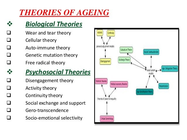 physiological changes of aging biology essay Young adult development project introduction about the project changes in young (generally defined as puberty through age 18) global, technological, rapidly-changing world if all goes well, biology and environment bring a surge of growth paralleling those of childhood and adolescence.