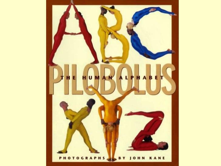 Human Alphabets 3/3                       ( 1834 – 2011 )•   Pilobolus Human Alphabet by John Kane (2005)•   The Naked Lad...